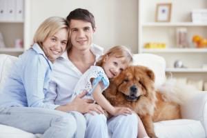 educazione cani a domicilio