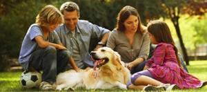 educazione cani